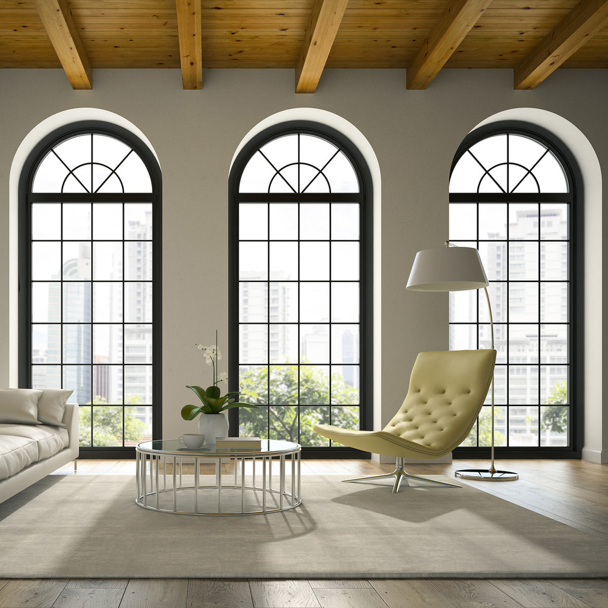 Windows & Skylights